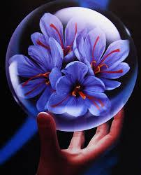 خواص ضد سرطانی زعفران
