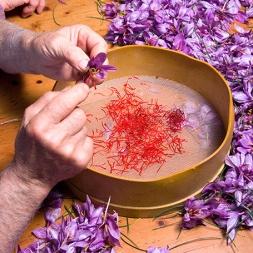 قیمت بهترین انواع زعفران اصل قائنات