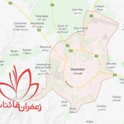 نمایندگی فروش زعفران فله در همدان