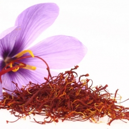 تفاوت انواع زعفران تاریخ مصرف گذشته و زعفران تازه