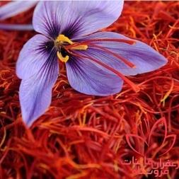 قیمت آنلاین زعفران پوشال