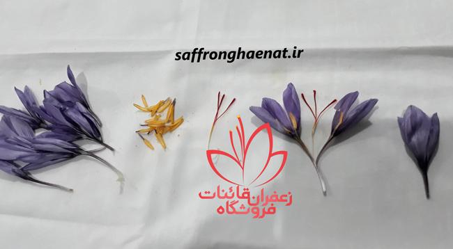 قیمت پرچم زعفران