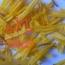 قیمت پرچم زرد زعفران