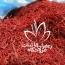 فروش زعفران سرگل ممتاز قائنات