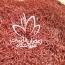 زعفران سرگل چیست