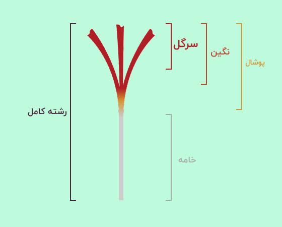 قیمت زعفران فله خرید زعفران عمده